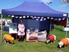 Sheepy stall at Cartmel races